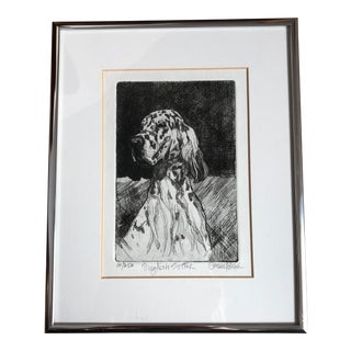 Late 20th Century English Setter Dog Framed Etching Print For Sale