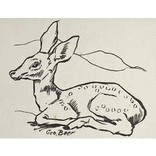 Fawn Pen & Ink Drawing For Sale