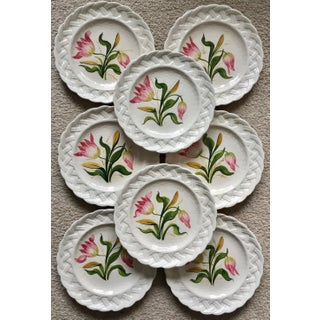 Italian Faience Hand-Painted Tulip Plates-Set 8 Preview