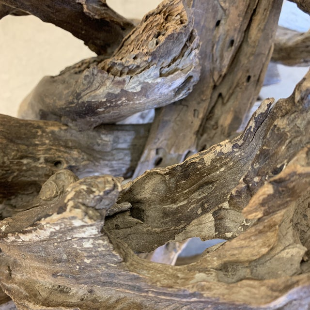 Unique Sculptural Driftwood Table For Sale - Image 10 of 11