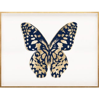 Butterfly Royale, Blue 1 Framed Artwork For Sale