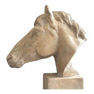Large Plaster Horse Head Sculpture For Sale