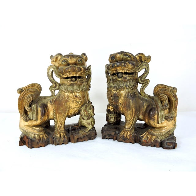 A pair of antique Qing Chinese hand carved gilt wood Foo Lions as they are correctly known - otherwise known as Foo Dogs....