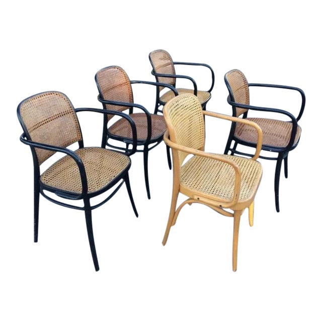 "Josef Hoffman Bentwood & Cane ""Prague"" Chairs - Set of 5 - Image 1 of 8"