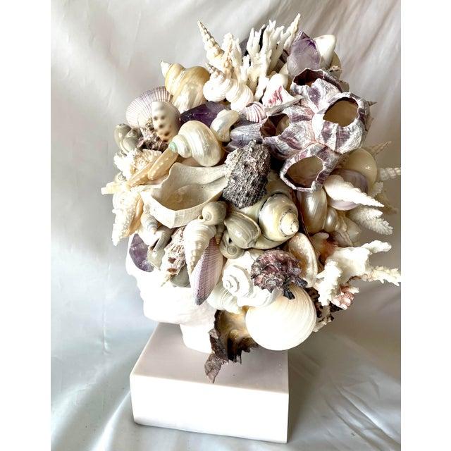 Christa's South Seashells Large Shell-Encrusted Hygiea Head For Sale - Image 4 of 6