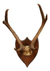 Image of Brown Decorative Brackets