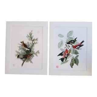 Giclee Audubon Bird Print For Sale