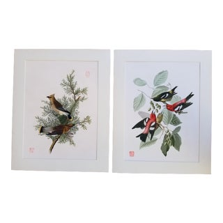 Vintage Giclee Audubon Bird Print For Sale