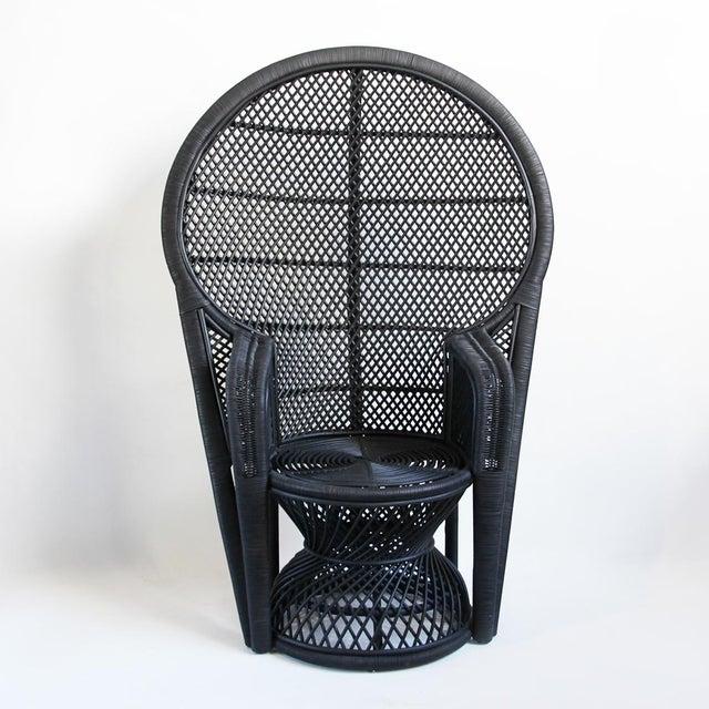 Black Perindo Peacock Chair Chairish