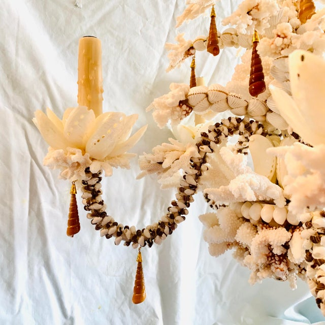Christa's South Seashells Custom Shell Chandelier For Sale - Image 4 of 5