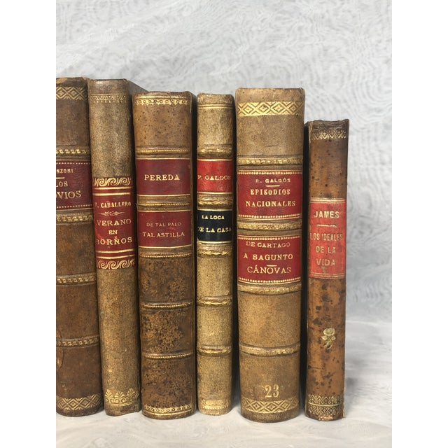 Antique Leather Bound Spanish Books - Set of 8 For Sale - Image 4 of 13