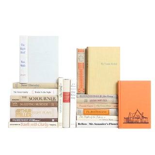 Twentieth Century Classic Novels- Set of 20 For Sale