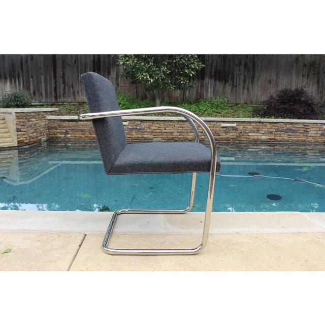 Vintage Ludwig Mies Van Der Rohe Knoll Tubular Brno Chair - Image 4 of 10