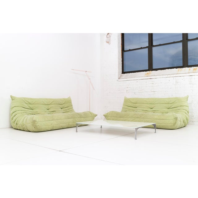 Pair of Michel Duraroy Togo Sofas For Sale In New York - Image 6 of 9