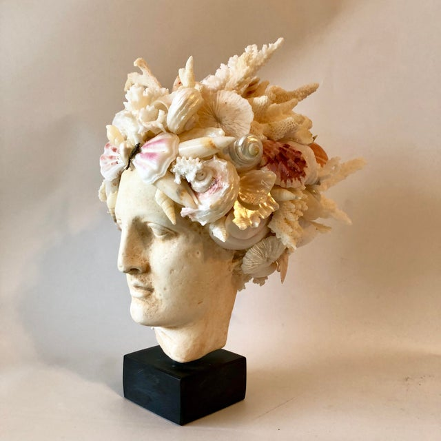 Contemporary Organic Modern Christa's South Seashells Cast Stone Hygiea Head For Sale - Image 3 of 6