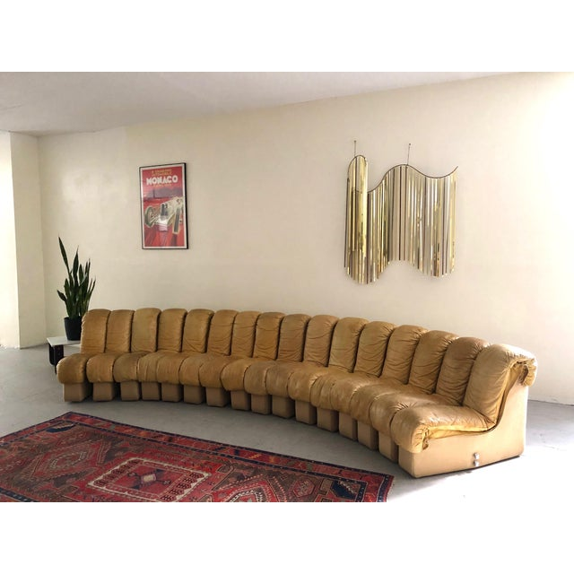 """Monumental De Sede Ds600 """"Non-Stop"""" Snake Sofa For Sale - Image 9 of 9"""