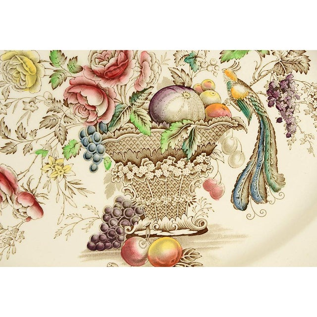 "Johnson Brothers Bird Of Paradise Brown Multicolor 17"" Oval Serving Platter. Old English,Brown Multicolor,Bird Floral"