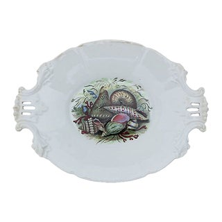 Antique Ironstone Shell Serving Plate For Sale
