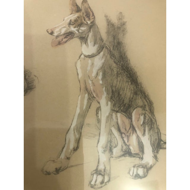 2000s Portrait of Dogs Pastel and Ink Drawing, Framed For Sale - Image 4 of 11