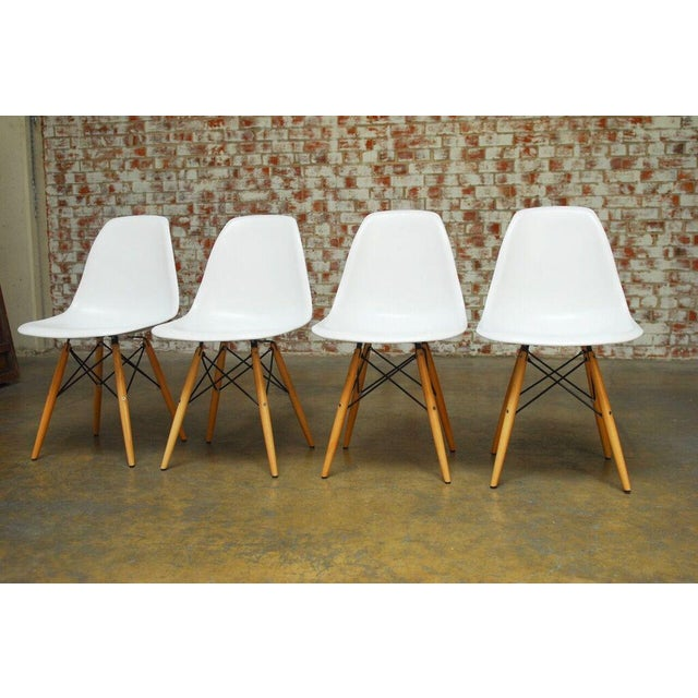 Set of Four Herman Miller Dsw Style Dining Chairs - Image 3 of 11