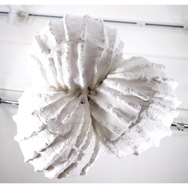 2010s Mid-Century Modern Sea Shell Plaster Pendant/Chandelier For Sale - Image 5 of 7
