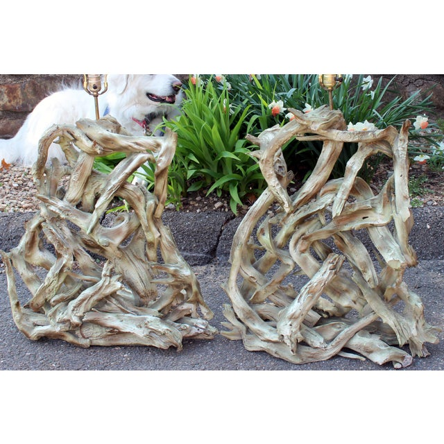 """Huge vintage pair of heavy driftwood lamps, circa 1960's. 45"""" high overall, 26"""" wide, 12"""" deep. Good condition, joins are..."""