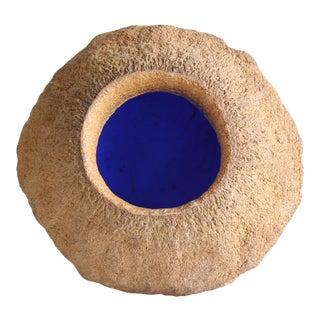 Sapucaia Blue No. 5 Seed Pod For Sale