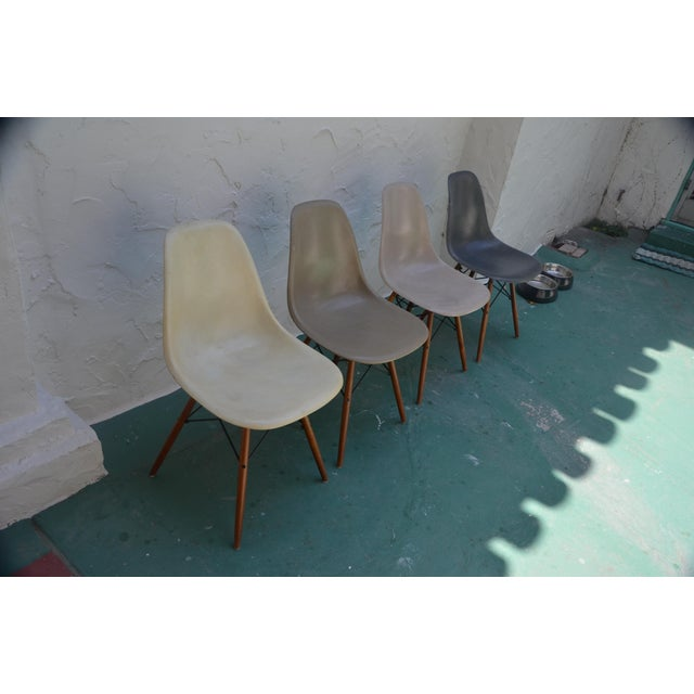 1958 Vintage Eames Molded Dowel-Leg Fiberglass Chairs - Set of 4 - Image 3 of 5