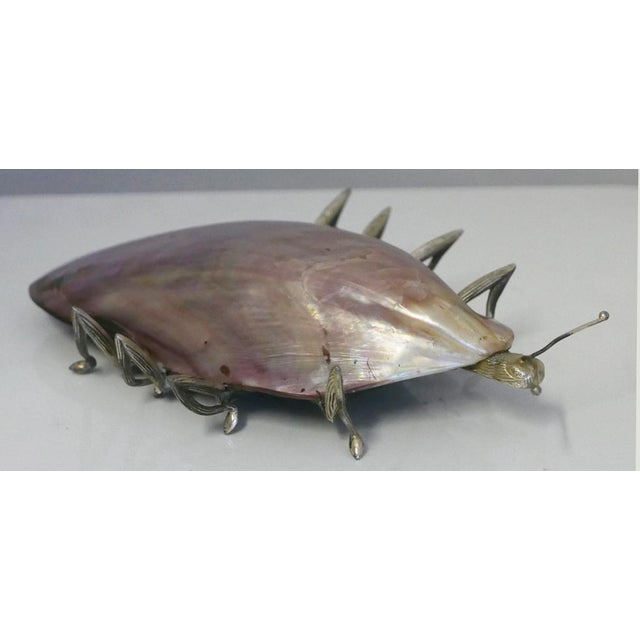 Unique hand crafted 8 legged insect made from a shell. It has 8 metal legs.