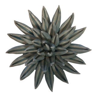 Light Blue Sea Urchin For Sale