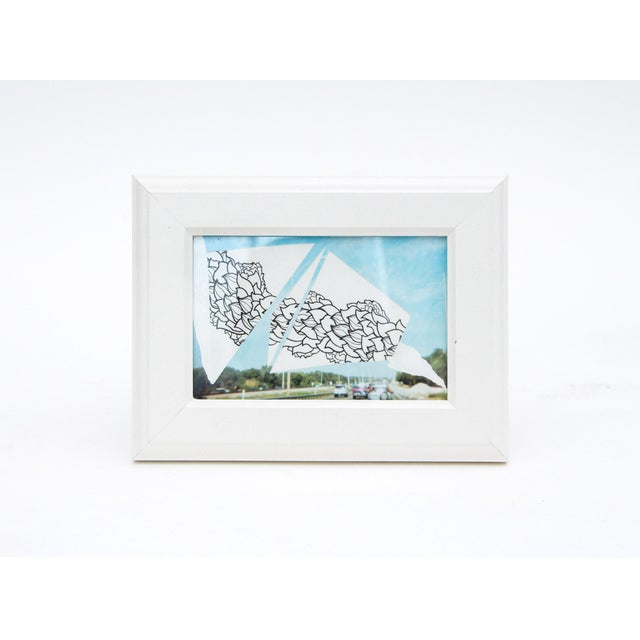 Framed Original Leaf Drawing & Photograph Collage - Image 4 of 5
