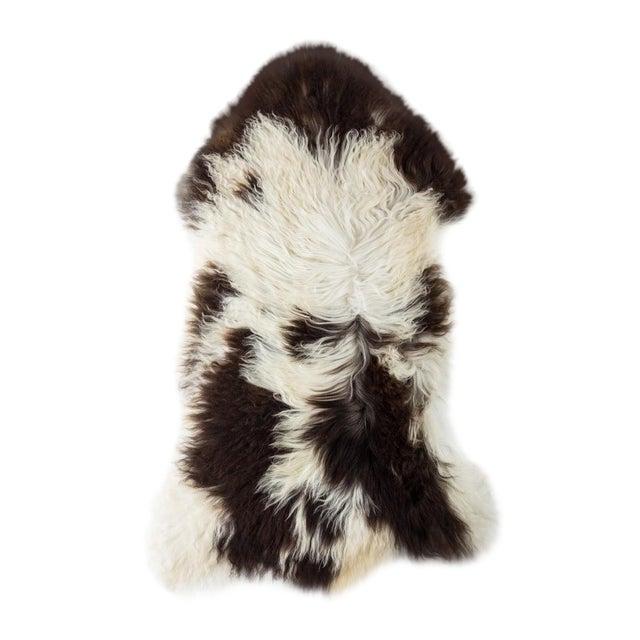 "2010's Modern Natural Sheepskin Pelt Rug - 1'10""x3'7"" For Sale"