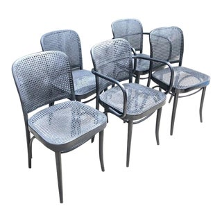 Josef Hoffmann for Thonet Prague Caned Bentwood Chairs - Set of 5 For Sale