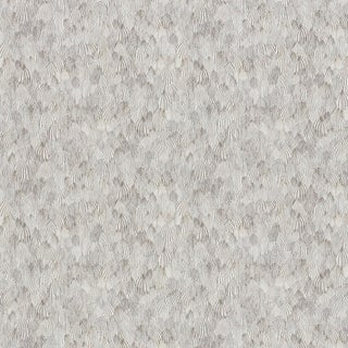Sample - Schumacher Feathers Wallpaper in Zebra Preview