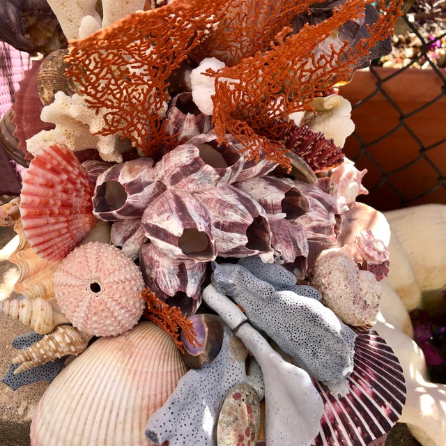Seashell-Encrusted Bookends - A Pair For Sale In West Palm - Image 6 of 8