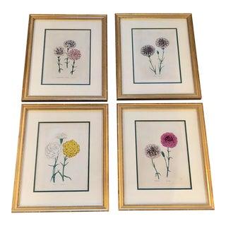 Antique Framed Botanical Prints - Set of 4 For Sale