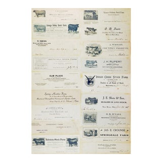 Early 20th Century Antique Collection of Cattle & Livestock Letterhead Graphics For Sale