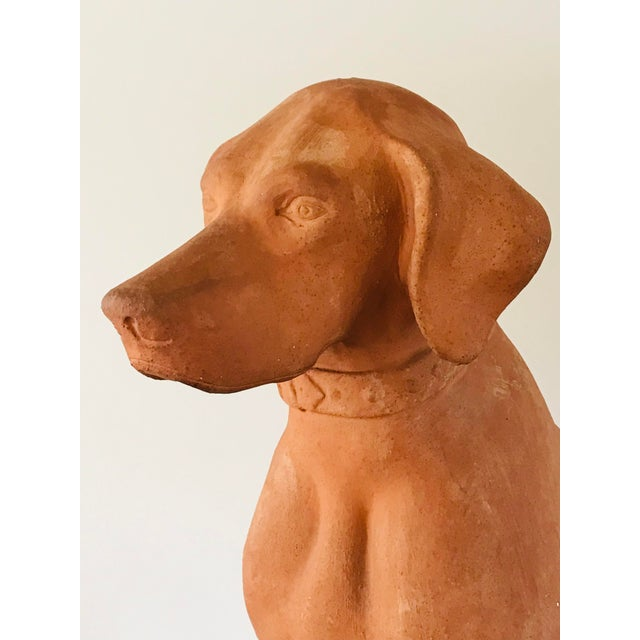 1920s Italian Terracotta Statue of a Hound For Sale - Image 5 of 13