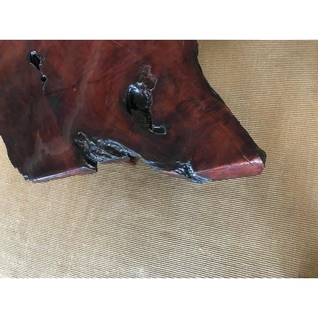 Coffee Vintage Burl Wood Live Edge Slab Coffee Table For Sale - Image 8 of 9