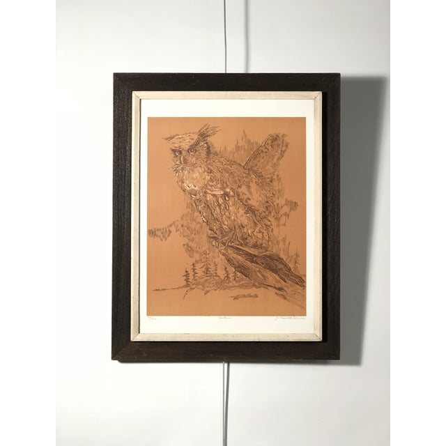 Copper Midcentury Owl Lithograph by Z. Charlotte Sherman For Sale - Image 8 of 8
