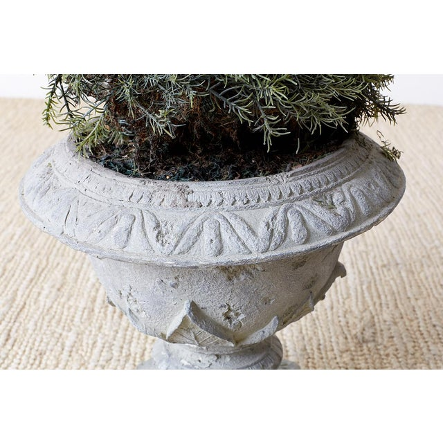 Pair of Faux Spiral Cypress Trees in Urns For Sale - Image 12 of 13