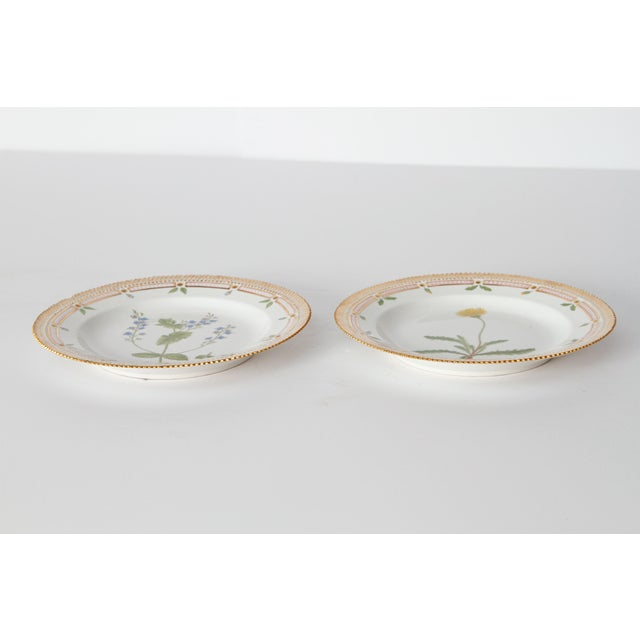 Pair of Flora Danica Plates by Royal Copenhagen #20/3573 and #20/3549 For Sale - Image 12 of 13
