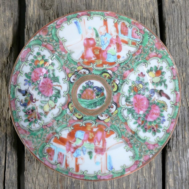 Antique Chinese Qing Rose Medallion Porcelain 6 Inch Plates Set of 4 For Sale - Image 9 of 13