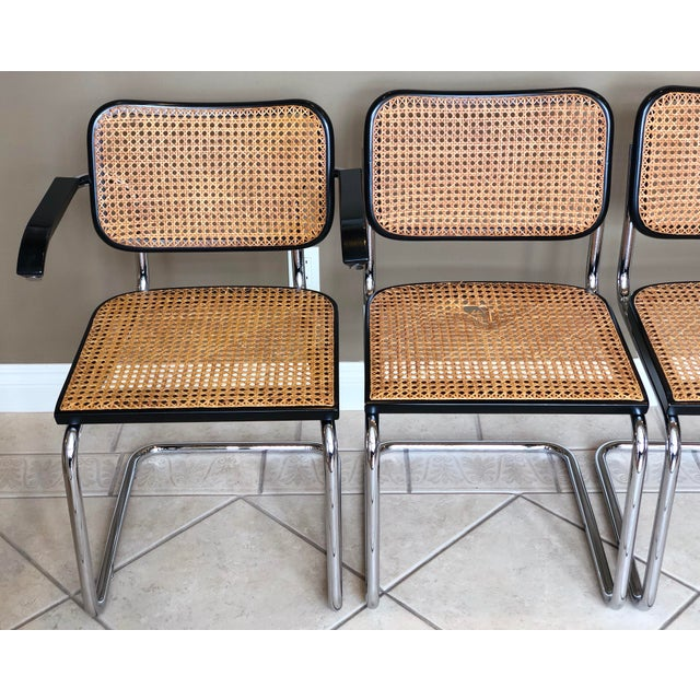 1950s 1950s Knoll Authentic Ebonized Beech Cesca Chairs – Set of 7 For Sale - Image 5 of 12