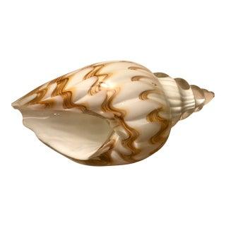 Decorative Glass Shell