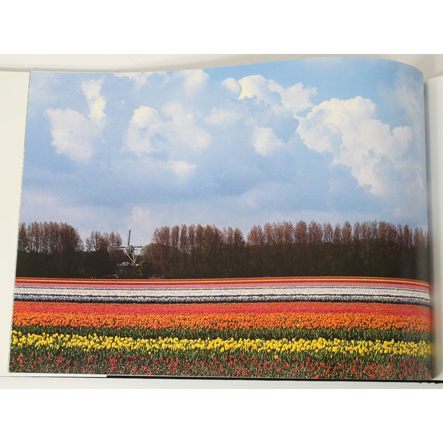 """""""Flower Show"""" First Edition Book - Image 7 of 8"""