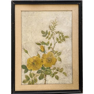 Vintage Painting of Yellow Garden Roses With Black Wood Frame