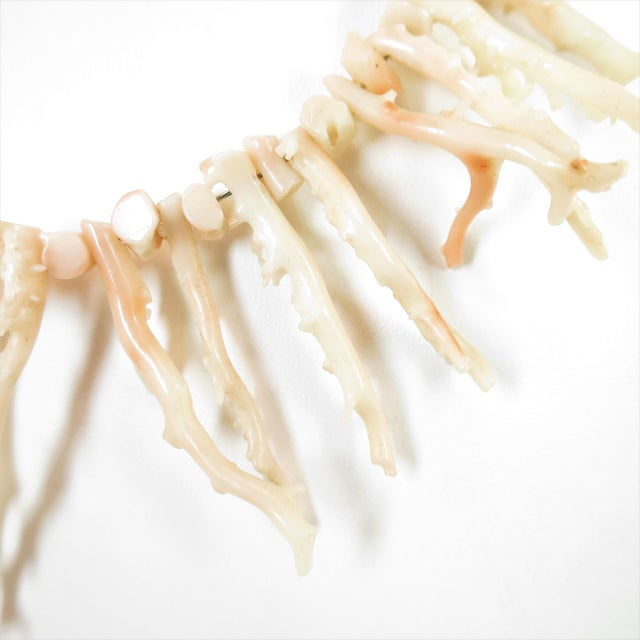 Shell Angel Skin Coral Branch Necklace 1930s For Sale - Image 7 of 11