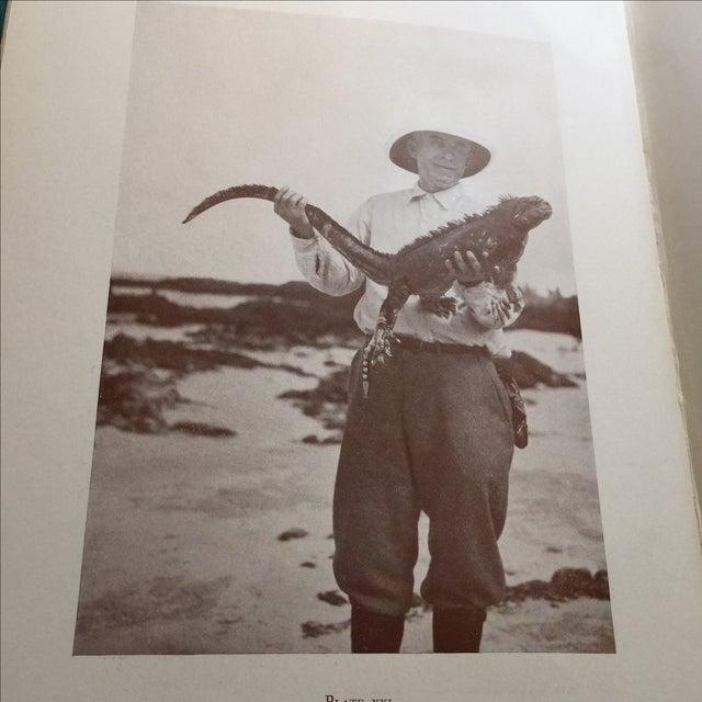 "1925 ""Tales of Fishing Virgin Seas"" by Zane Grey - Image 11 of 11"