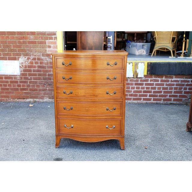 Vintage 1950s Satinwood Mahogany Bedroom 6 Graduated Chest of Drawers For Sale - Image 9 of 12